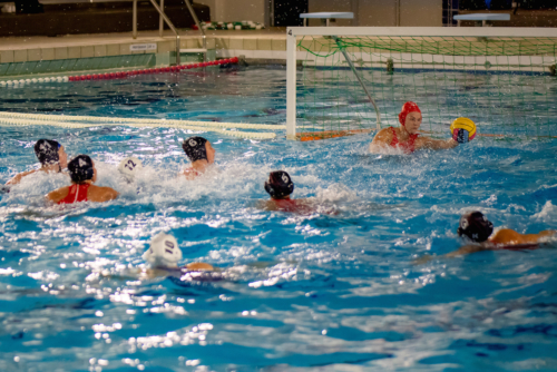 luc water-polo 2019-2020 photo morelle-15