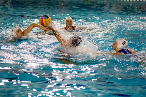 luc water-polo 2019-2020 photo morelle-16