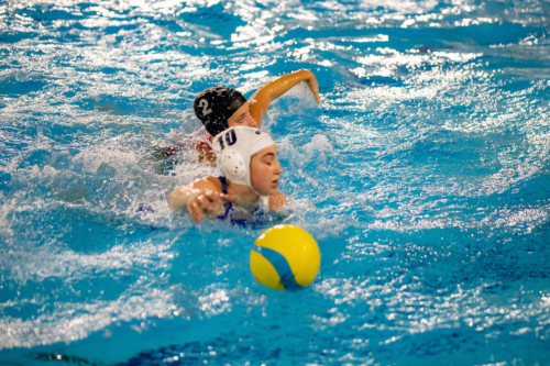 luc water-polo 2019-2020 photo morelle-19